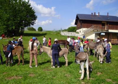 Escursione asini Monti Sibillini