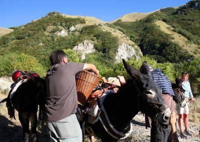 Trekking muli Monti Sibillini