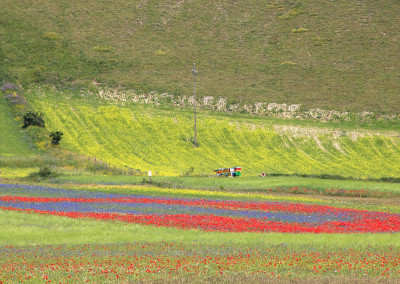 Bed and Breakfast Castelluccio di Norcia