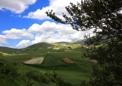 Castelluccio Norcia 2016
