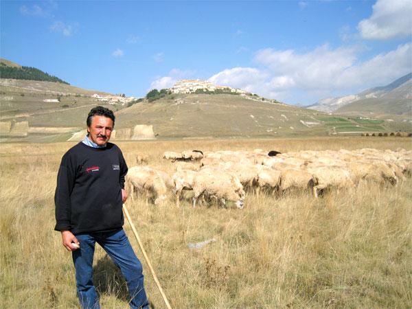 Prodotti tipici di castelluccio di norcia pecorino ricotta for Prodotti tipici di roma