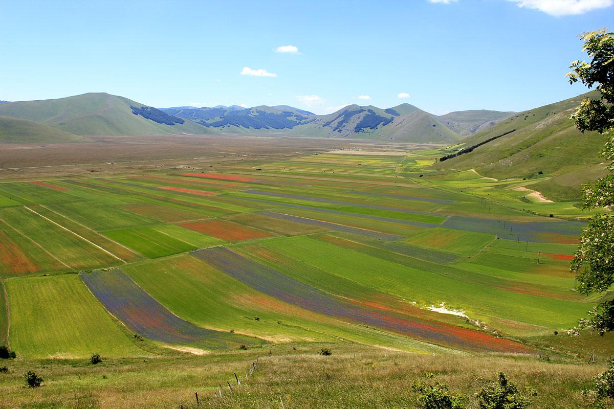Parsec Agricultura a Castelluccio - Castelluccio di Norcia