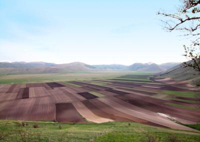 Parsec agricultura a Castelluccio