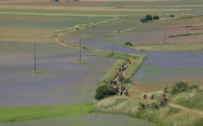 Trekking Solidale nelle Terre Mutate